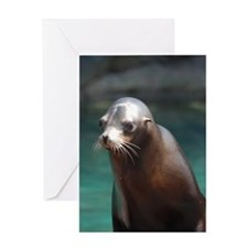 Adorable Sea Lion Greeting Card