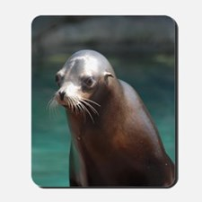 Adorable Sea Lion Mousepad