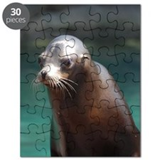 Adorable Sea Lion Puzzle