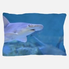 Bonnethead Shark Underwater Pillow Case