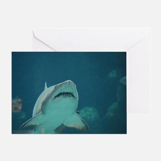 Shark Predator Greeting Card