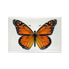 Monarch Butterfly Rectangle Magnet (10 Pack)