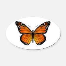Monarch Butterfly Oval Oval Car Magnet