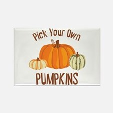 Pick Your Own Pumpkins Magnets