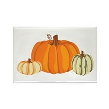 Pumpkins Magnets