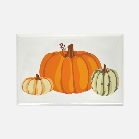Pumpkins Magnets