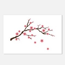 Cherry Blossom Flowers Branch Postcards (Package o