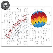 Got Hacky? Puzzle