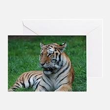 Gorgeous Tiger Greeting Card