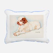 Rectangular Rectangular Rectangular Canvas Pillow