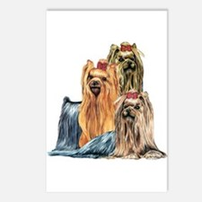 Yorkshire Terrier Yorkie Collage Postcards (Packag