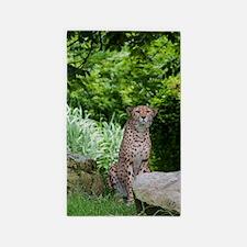 Jaguar 3'x5' Area Rug