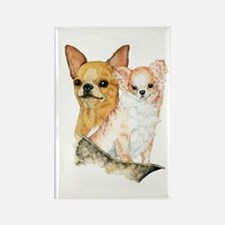 Chihuahua Pair Rectangle Magnet