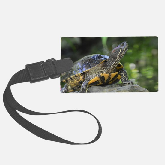 Turtle on a Rock Luggage Tag