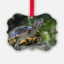 Turtle on a Rock Ornament