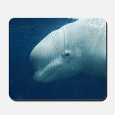 White Whale Mousepad