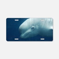 White Whale Aluminum License Plate