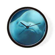 Cute Beluga Whale Wall Clock