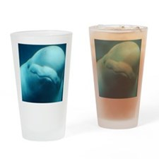 Cute Beluga Whale Drinking Glass