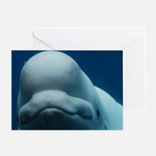 Sweet Beluga Whale Greeting Card