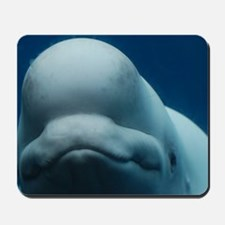 Sweet Beluga Whale Mousepad