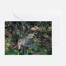Wilderness Wolf Greeting Card
