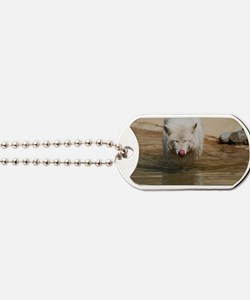 White Wolf Licking His Nose Dog Tags