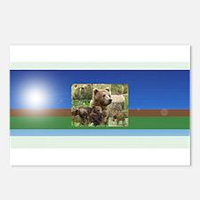 Bears Postcards (Package of 8)