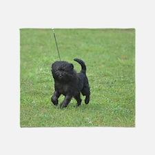 Black Affenpinscher Dog Throw Blanket