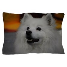 American Eskimo Dog Pillow Case