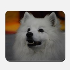 American Eskimo Dog Mousepad