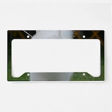 Grinning American Eskimo Dog License Plate Holder