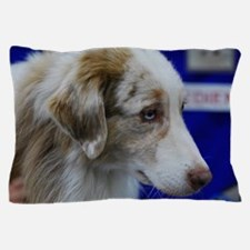 Australian Shepherd Dog Pillow Case