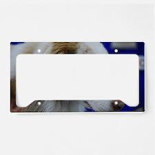 Australian Shepherd Dog License Plate Holder