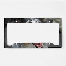 Australian Shepherd Herd Dog License Plate Holder
