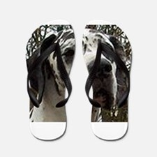 great dane harlequin Flip Flops