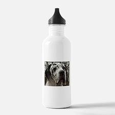 great dane harlequin Water Bottle