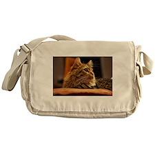 Cat ginger Messenger Bag