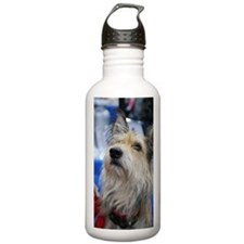 Berger Picard Dog Sports Water Bottle