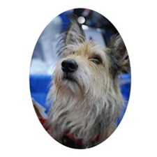 Berger Picard Dog Oval Ornament
