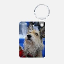 Berger Picard Dog Keychains