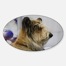 Shaggy Berger Picard Dog Sticker (Oval)