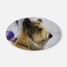 Shaggy Berger Picard Dog Oval Car Magnet