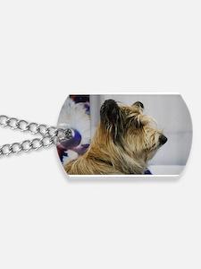 Shaggy Berger Picard Dog Dog Tags