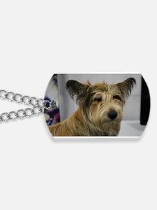 Cute Berger Picard Dog Dog Tags