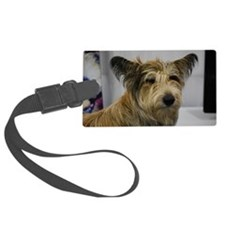Cute Berger Picard Dog Luggage Tag