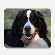 Adorable Bernese Mountain Dog Mousepad