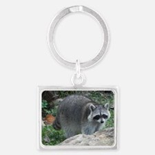 Fluffy Racoon Landscape Keychain