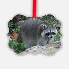 Fluffy Racoon Ornament