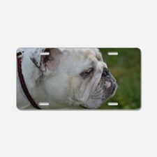 Face of a Smug Bulldog Aluminum License Plate